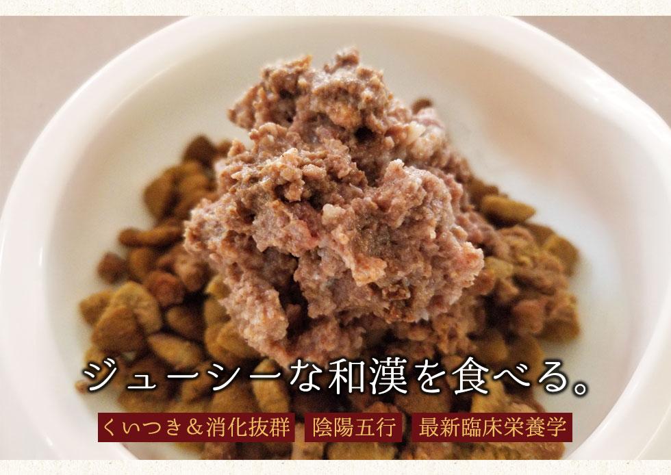 ジューシーな和漢を食べる くいつき&消化抜群 陰陽五行 最新臨床栄養学