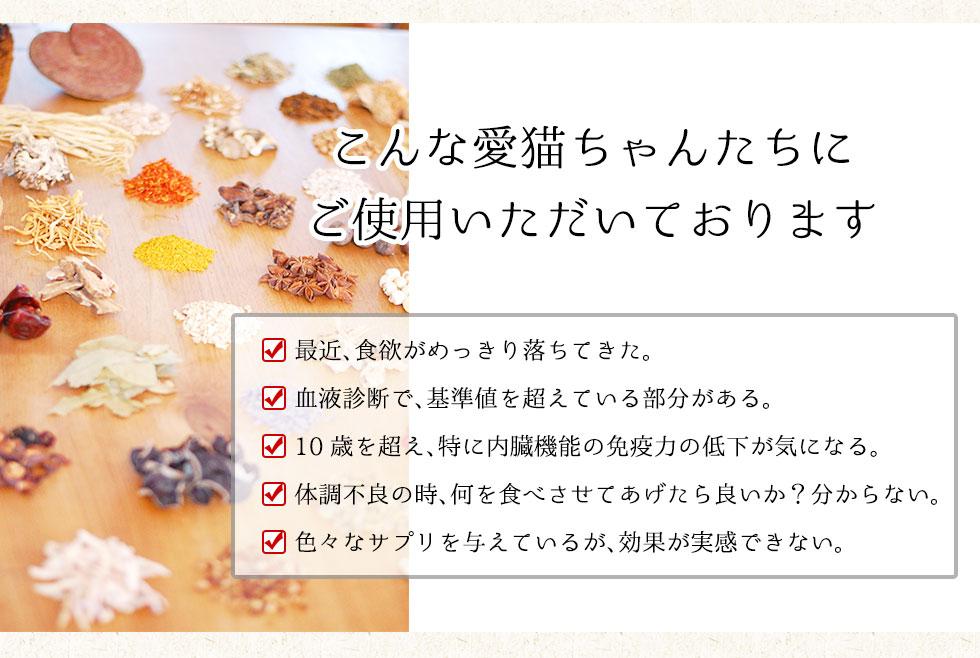 こんな愛猫ちゃんにみらいの和漢ウエット【G・A・N+】(特別療法食)<br>Good Alimentation of Nature +をご使用いただいております。