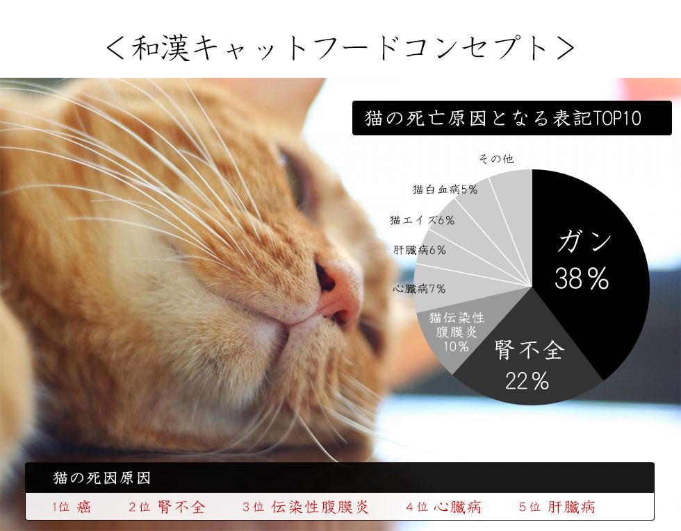 <和漢キャットフードコンセプト>猫の死因原因1位 癌 2位 腎不全 3位 伝染性腹膜炎 4位 心臓病 5位 肝臓病
